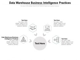 Data Warehouse Business Intelligence Practices Ppt Powerpoint Presentation Ideas Example File Cpb