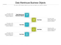 Data Warehouse Business Objects Ppt Powerpoint Presentation Inspiration Influencers Cpb