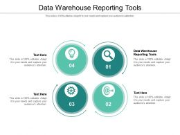 Data Warehouse Reporting Tools Ppt Powerpoint Presentation Gallery Slides Cpb