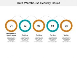 Data Warehouse Security Issues Ppt Powerpoint Presentation Ideas Background Images Cpb