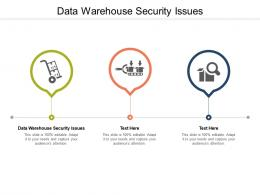 Data Warehouse Security Issues Ppt Powerpoint Presentation Infographics Microsoft Cpb