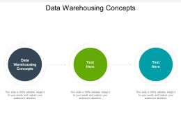 Data Warehousing Concepts Ppt Powerpoint Presentation File Guidelines Cpb