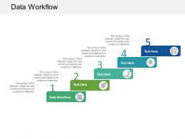 Data Workflow Ppt Powerpoint Presentation Professional Introduction Cpb