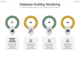 Database Auditing Monitoring Ppt Powerpoint Presentation Outline Model Cpb