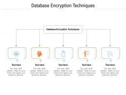 Database Encryption Techniques Ppt Powerpoint Presentation Infographics Design Cpb