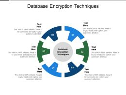 Database Encryption Techniques Ppt Powerpoint Presentation Styles Infographic Template Cpb