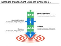 Database Management Business Challenges Advertising Strategies Product Funding