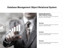 Database Management Object Relational System Ppt Powerpoint Ideas Cpb