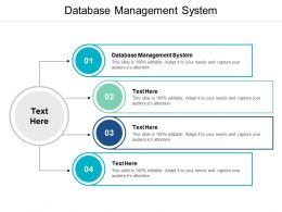 Database Management System Ppt Powerpoint Presentation Gallery Slides Cpb