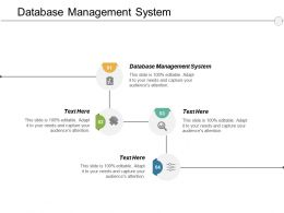 Database Management System Ppt Powerpoint Presentation Ideas Icons Cpb