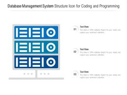 Database Management System Structure Icon For Coding And Programming