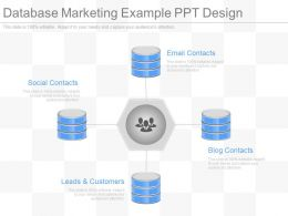 Database Marketing Example Ppt Design