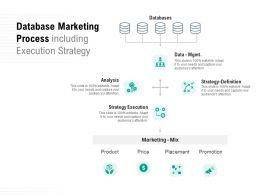 Database Marketing Process Including Execution Strategy