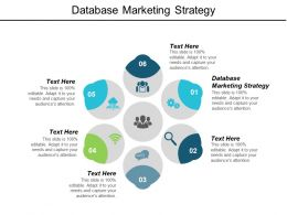 Database Marketing Strategy Ppt Powerpoint Presentation Layouts Files Cpb