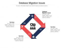 Database Migration Issues Ppt Powerpoint Presentation Pictures Graphics Example Cpb