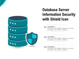 Database Server Information Security With Shield Icon