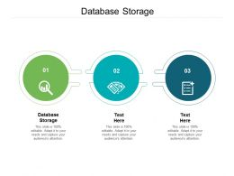 Database Storage Ppt Powerpoint Presentation Outline Graphics Tutorials Cpb