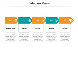 Database Views Ppt Powerpoint Presentation Professional Themes Cpb