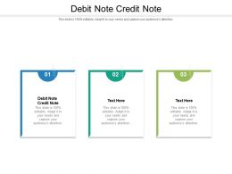 Debit Note Credit Note Ppt Powerpoint Presentation Outline Styles Cpb