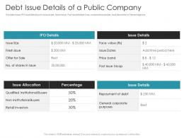 Debt Issue Details Of A Public Company Pitch Deck Raise Debt IPO Banking Institutions Ppt Elements