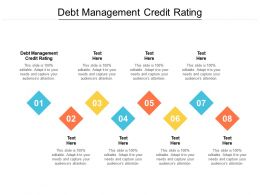 Debt Management Credit Rating Ppt Powerpoint Presentation Gallery Designs Cpb
