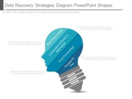 Debt Recovery Strategies Diagram Powerpoint Shapes