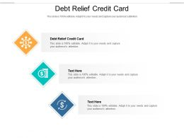 Debt Relief Credit Card Ppt Powerpoint Presentation Slides Styles Cpb