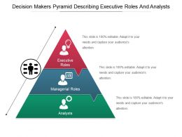 Decision Makers Pyramid Describing Executive Roles And Analysts