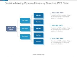 Decision Making Process Hierarchy Structure Ppt Slide