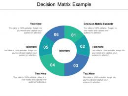 Decision Matrix Example Ppt Powerpoint Presentation Pictures Example Topics Cpb