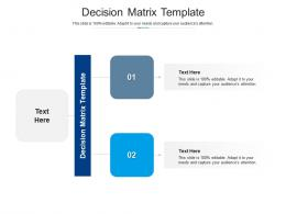 Decision Matrix Template Ppt Powerpoint Presentation Inspiration Graphic Images Cpb