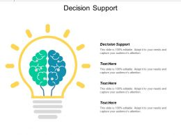 Decision Support Ppt Powerpoint Presentation Icon Picture Cpb
