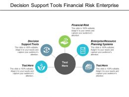 Decision Support Tools Financial Risk Enterprise Resource Planning Systems Cpb