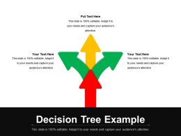 Decision Tree Example PPT Templates