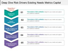 Deep Dive Risk Drivers Existing Needs Metrics Capital Implications