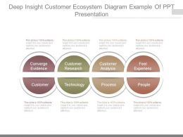 Deep Insight Customer Ecosystem Diagram Example Of Ppt Presentation