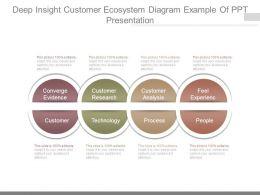 Deep Insight Customer Ecosystem Diagram Example Of Ppt Presentation
