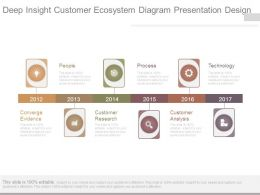 Deep Insight Customer Ecosystem Diagram Presentation Design