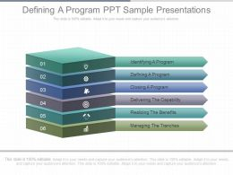 Defining A Program Ppt Sample Presentations