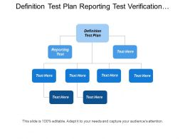 Definition Test Plan Reporting Test Verification Requirement
