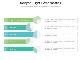 Delayed Flight Compensation Ppt Powerpoint Presentation Infographic Template Cpb