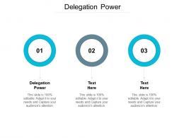 Delegation Power Ppt Powerpoint Presentation Icon Portrait Cpb