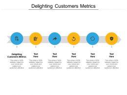 Delighting Customers Metrics Ppt Powerpoint Presentation Portfolio Introduction Cpb