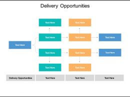 Delivery Opportunities Ppt Powerpoint Presentation Inspiration Files Cpb