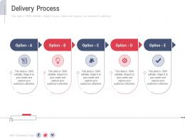 Delivery Process New Service Initiation Plan Ppt Summary