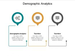 Demographic Analytics Ppt Powerpoint Presentation File Themes Cpb