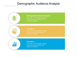 Demographic Audience Analysis Ppt Powerpoint Presentation Infographic Template Outfit Cpb