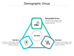 Demographic Group Ppt Powerpoint Presentation Examples Cpb