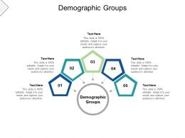 Demographic Groups Ppt Powerpoint Presentation Gallery Display Cpb