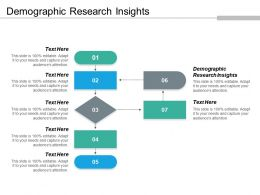 Demographic Research Insights Ppt Powerpoint Presentation Icon File Formats Cpb